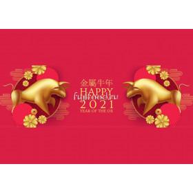 Китайский Новый год  新年快乐